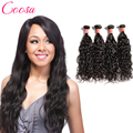 Coosa Malaysian Water Wave Virgin Hair 4 Bundles 12-26 Inch Brazillian Wet and Wavy Human Hair Malaysian Natural Wave Hair
