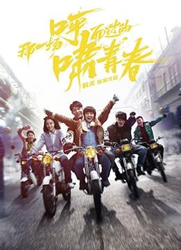 《那一场呼啸而过的青春》2017年中国大陆剧情,爱情电影在线观看