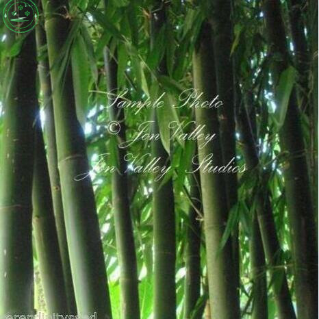 online get cheap asian garden decor -aliexpress | alibaba group