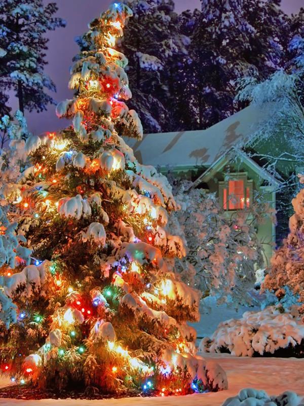 Allenjoy christmas backdrop 6.5x10ft(2x3m) Christmas tree snow  vinyl photography backdrops photo studio ZJ photography backdrops christmas indoor christmas atmosphere 5x7ft 1 5x2 2m studio photo backdrop zj