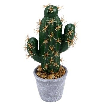 62737e7da Chico flor plantas florero estilo europeo plantas suculentas maceta  jardinera Mini Bonsai flor de Cactus maceta hogar Decoración arte