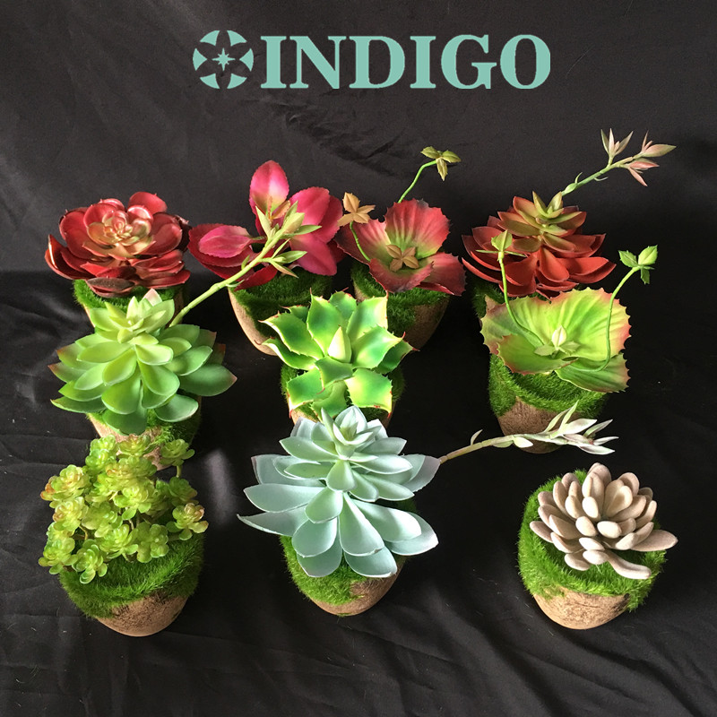 INDIGO-1 SET Red Succulent Plant Bonsai Artificial Plastic Flower Office Table Decoration Green Plant Background Free Shipping
