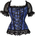 FREE SHIPPING Burlesque Costume Cosplay Pricess Rapunzel Tapestry Blue Corset Bustier Club Top