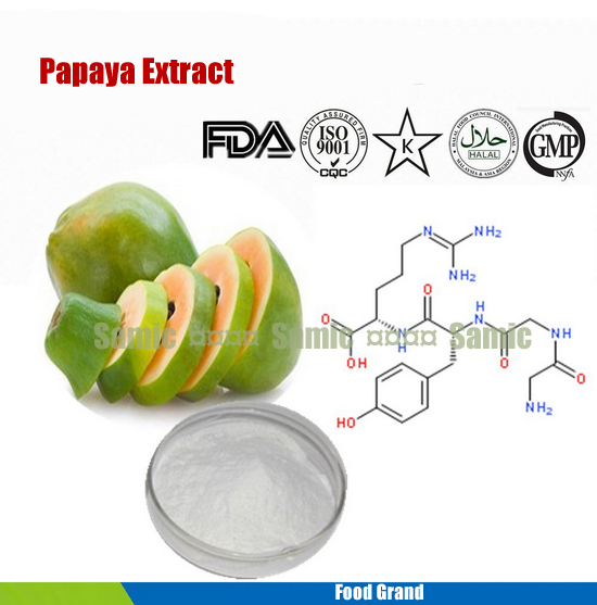 100% natural papaya extract 100g food grade Papain powder carica extract enzyme for Dietary Supplement and meat tenderizer