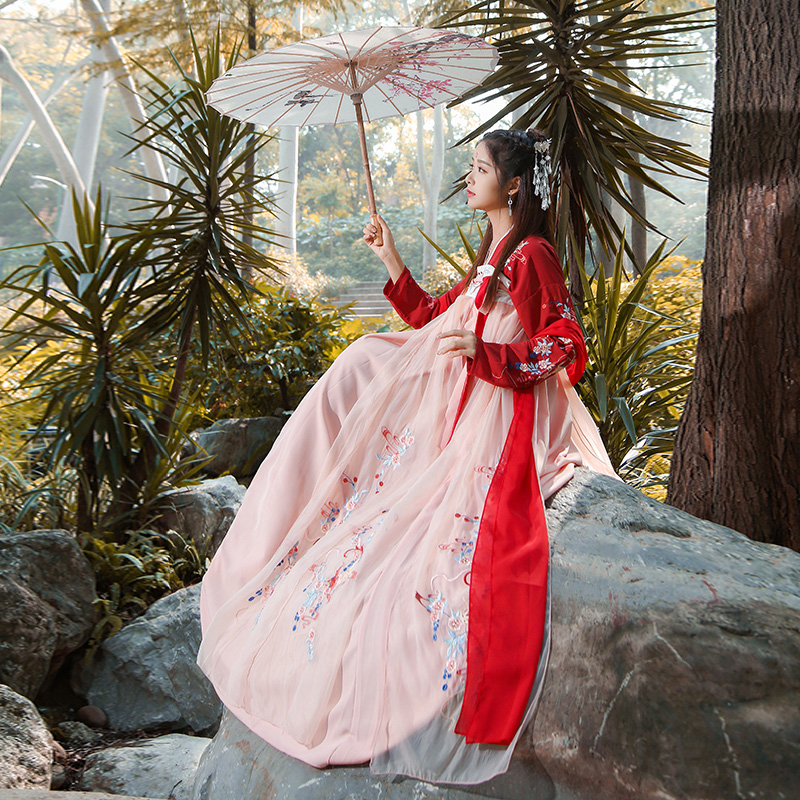Womens Hanfu Costume Ancient Chinese Fairy Folk Dance Dress Chiffon Tang Dynasty Princess Clothes Stage Performance Clothing