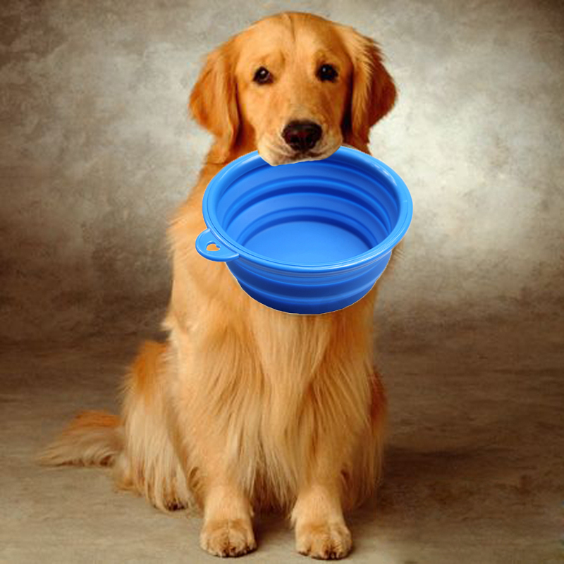 Portable Dog Water Bowl >> Us 2 69 15 Off 1pcspet Products Silicone Pet Folding Dog Bowls Portable Dog Bowls Wholesale For Food The Dog Drinking Water Bowl Pet Bowls In Dog
