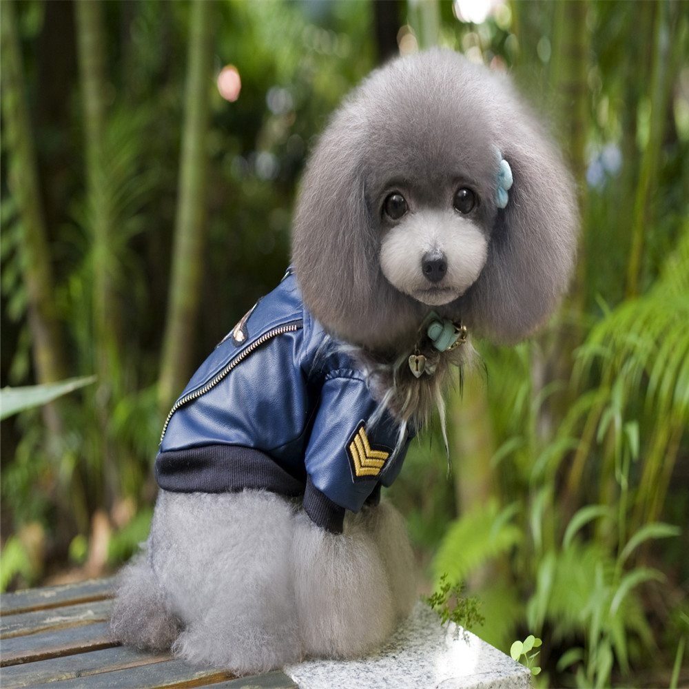 Leather jacket for dogs - Fa01 2015 Newest Style Pet Leather Jacket For Dog Clothes Pet Dog Coats Jackets Winter Warm