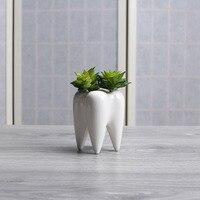 200 шт. зуб форма белый керамический цветочный горшок современный дизайн кашпо зубы модель мини настольный горшок креативный подарок (без ра