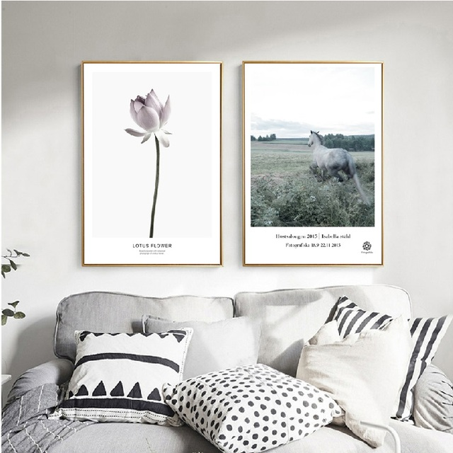 modern nordic calm lotus blossom horse silence grey background