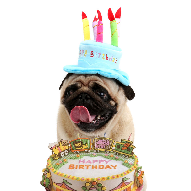 Cute Pet Cat Dog Happy Birthday Caps Soft Material Candles Design Pets Cap Hat Birthday Party Costume For Puppy Small Dogs Cats