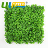 20 X20 UV Added Artificial Hedge Mat Green Artificial Plants Wall Garden Decoration Plastic Fence