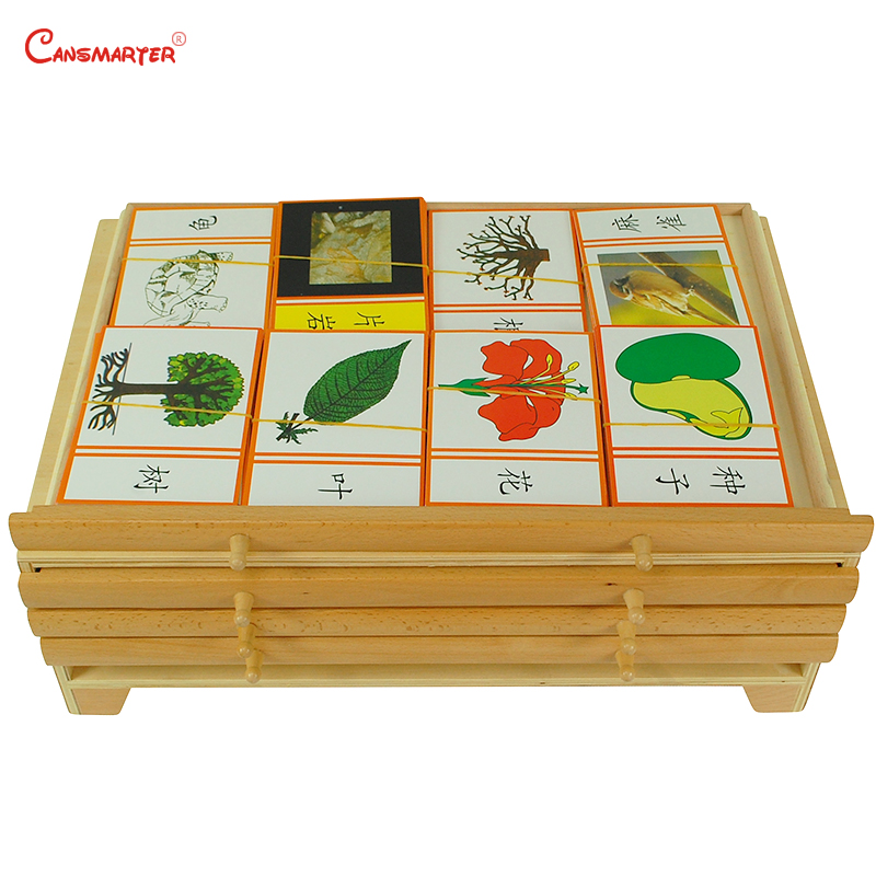 Botany Leaf Cabinet Puzzles Wooden Box Montessori Biological Teaching Toys Education Early Kids Preschool Materials - 3