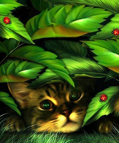 Diamante ricamo animale gatto 5d diy diamante pittura a punto croce fiore della resina piazza piena ricamo intarsio decorpittura