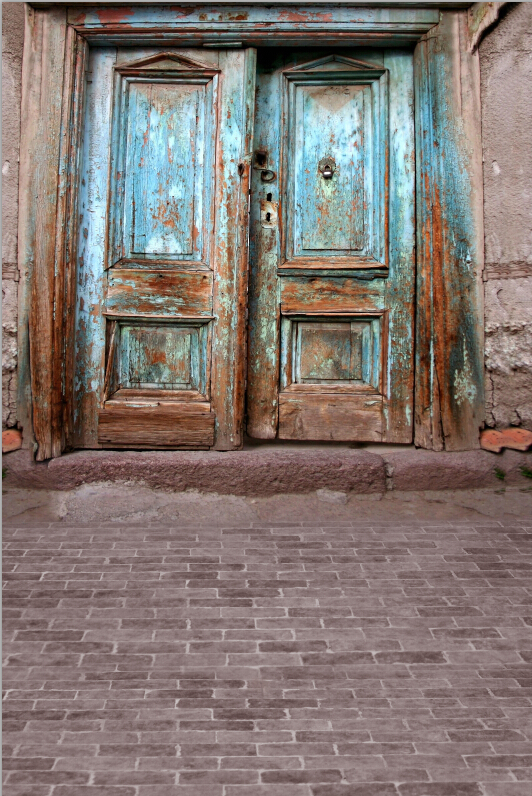 old door Backgrounds for sale  Vinyl cloth High quality Computer printed children backdrop
