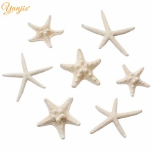 10pcs/lot 2020 New Arrival Summer Beach Real Starfish Kids Girl Barrette Hair Decoration DIY Accessories For Women Hair Clip