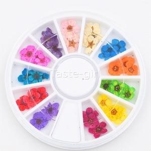 12 цветов настоящие натуральные Лепестковые сухие цветочные Типсы 3D колесо для дизайна ногтей украшение для ногтей для УФ геля инструменты для красоты маникюра nail jewelry nail art wheel3d nail art   АлиЭкспресс