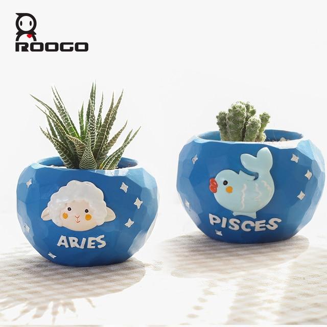Roogo mini blue 12 horoscopes flowerpot landscape plant bonsai succulent pots desk garden yard decoration best gift items