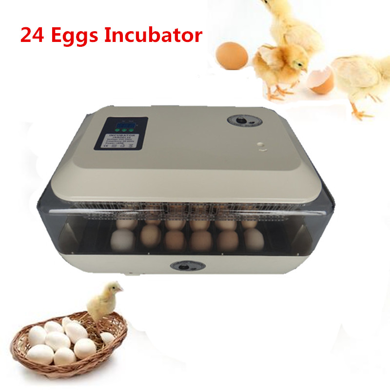 24 Eggs Automatic Incubator Egg Tray with Temperature Control Hatcher Incubation Equipment for Chicken Bird replacement compatible projector lamp prj rlc 015 for viewsonic pj502 pj552 pj562 projectors