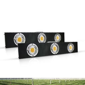Image 4 - CREE CXB3590 300W COB LED Grow Light Full Spectrum LED Lamp 3500K =HPS 600W Growing Lamp Indoor Plant Growth Panel Lighting