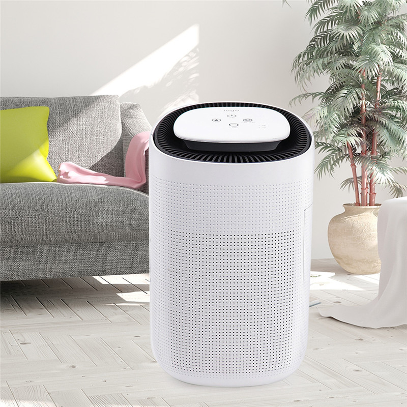 Invitop Q7 Air Purifier Dehumidifier Household Air Dryer HEPA Filter Air Cleaner Dehumidifier with Tank 110V-240V Air Purifier