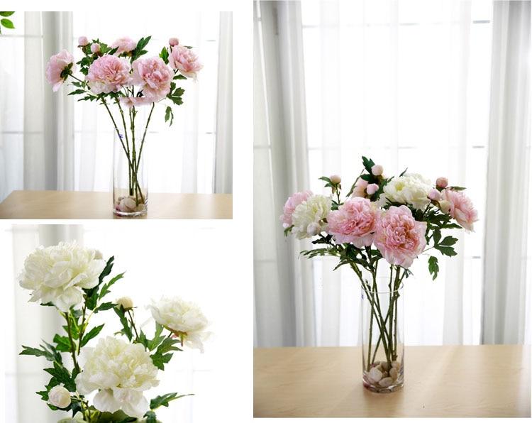 Peony flower (7)