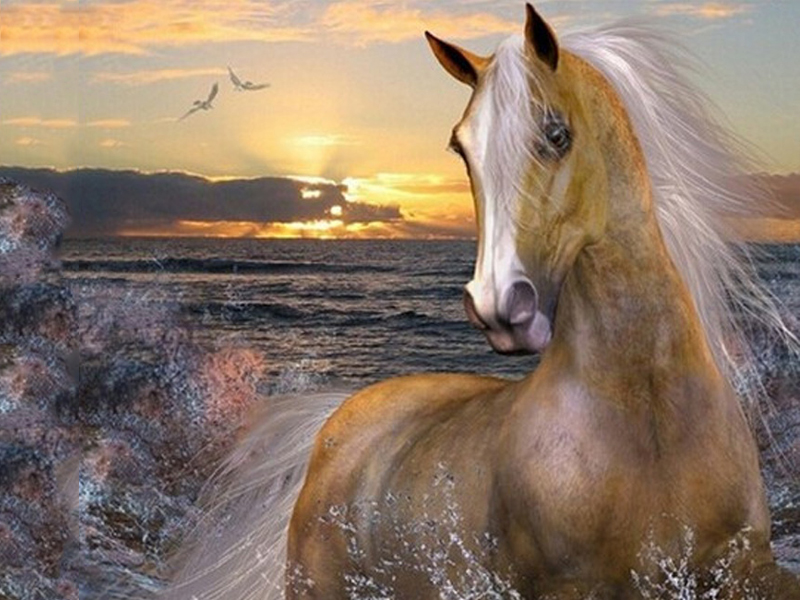 5D DIY Diamond Painting Horse Water Sunset Embroidery Diamond Painting Cross Stitch Rhinestone Mosaic Painting