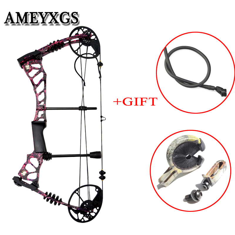 1set Archery Compound Bow Draw Weight 40 60lbs Carbon Fiber Bow Limbs Outdoor Hunting Bow Shooting