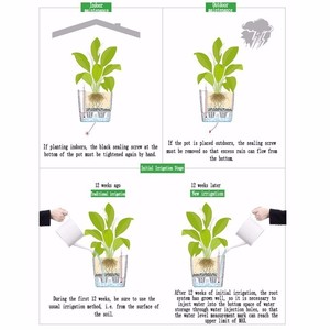 Image 5 - Creative Automatic Water Absorption flowerpot for Desktop Indoor Office decoration Large Plastic Lazy flower Pot Hydroponics