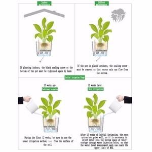 Image 5 - Creative อัตโนมัติดูดซับน้ำกระถางดอกไม้สำหรับเดสก์ท็อปสำนักงานในร่มตกแต่งพลาสติกขนาดใหญ่ Lazy ดอกไม้หม้อ Hydroponics