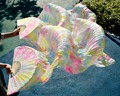 2017 female high quality Chinese silk veils dance fans Pair of belly dancing fans cheap hot saleDefilements