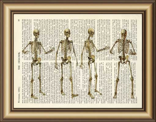 Skeleton Dictionary Canvas painting wall Art Print Poster Pictures ...