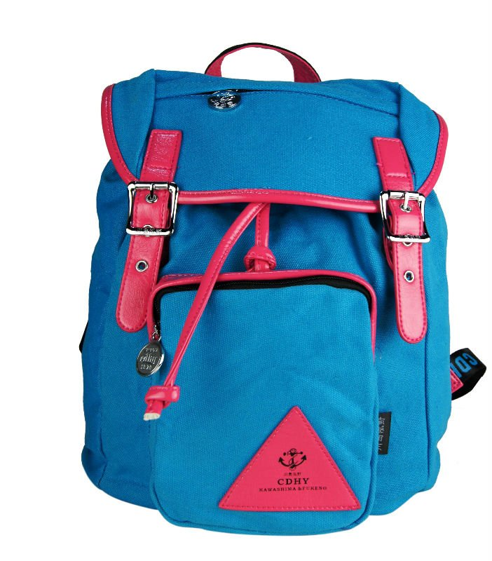 2011 hot selling backpack colorful fashion design bags shool bag street bags