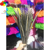 Natural Pheasant Feathers 32 48inch/80 120cm 10 Pcs Diy Carnival Costume Headress Mask Home Crafts