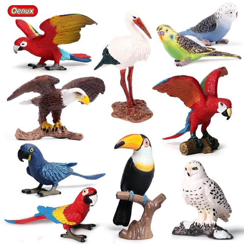 Oenux Original Wild Bird Animals Paradise Flamingos Macaw Sea Gull Pelican Owl Toucan Figurines PVC Action Figure Miniature Toy