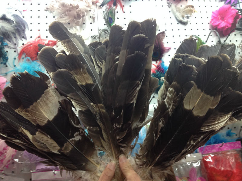 Wholesale perfect 50pcs high quality scare natural Crested Serpent Eagle feathers 14 17inch 35 42cm Decorative