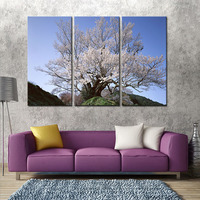 White Blossoming Cherry Tree Blue Sky HD Canvas Prints Floral Wall Art Landscape Picture for Living Room Decoration No Framed
