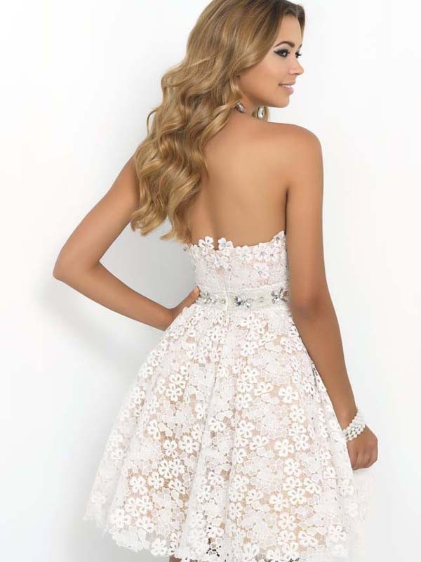 Elegant Lace Patchwork Solid Sleeveless A-line Party Dress