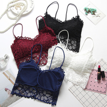 36b1b4eb05 Women Push Up Lace Bra Bralette For Women Seamless Wireless Bra Sexy  Lingerie Plus Size Underwear