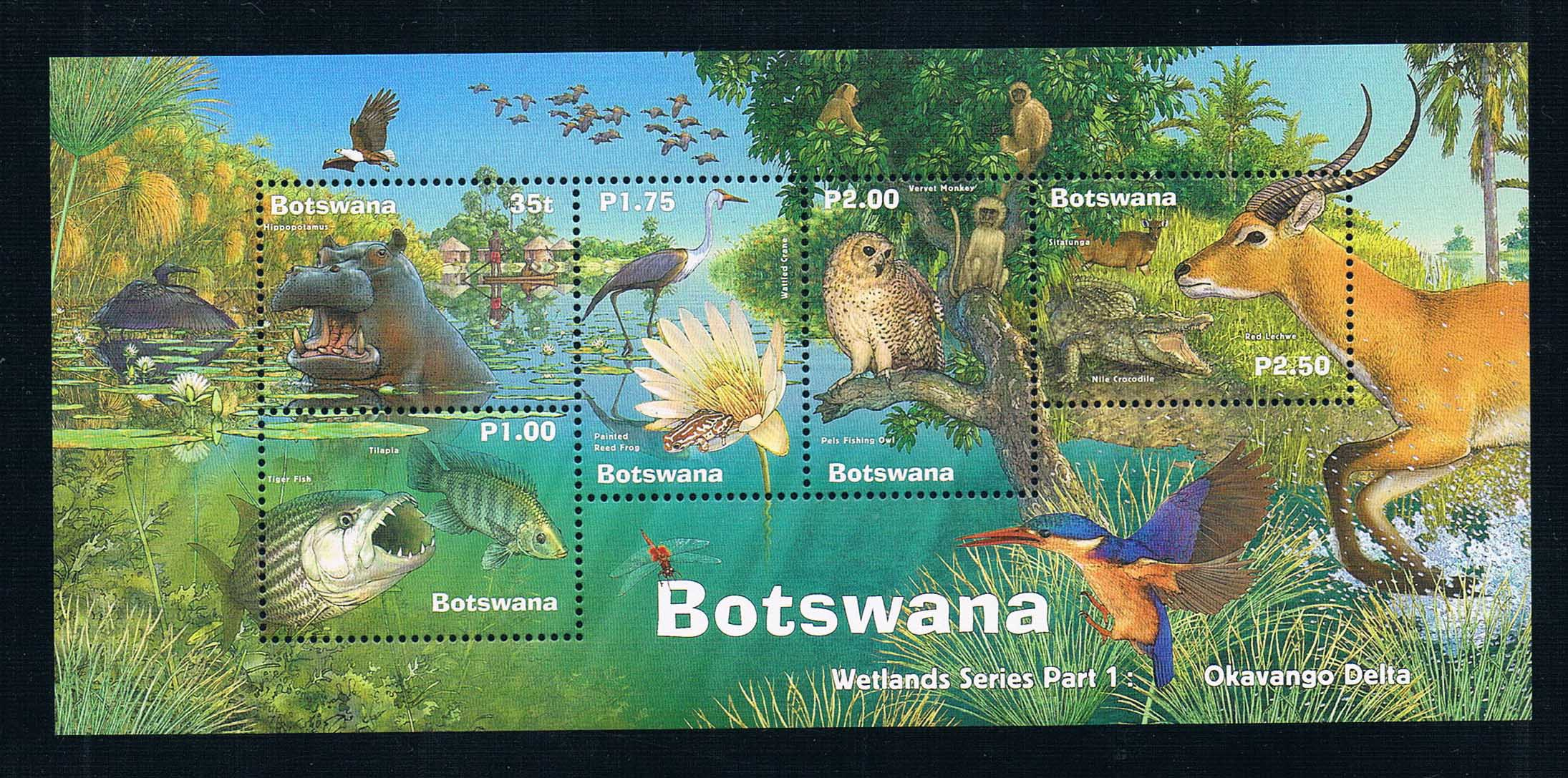 2000 EA3416 Botswana wetland group first World Heritage Okavango 1MS new 1210 awo sp lamp 016 replacement projector lamp compatible module for infocus lp850 lp860 ask c450 c460 proxima dp8500x