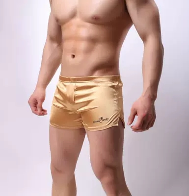 New Emulation Silk Household Pants Men's Shorts Pants Of Home