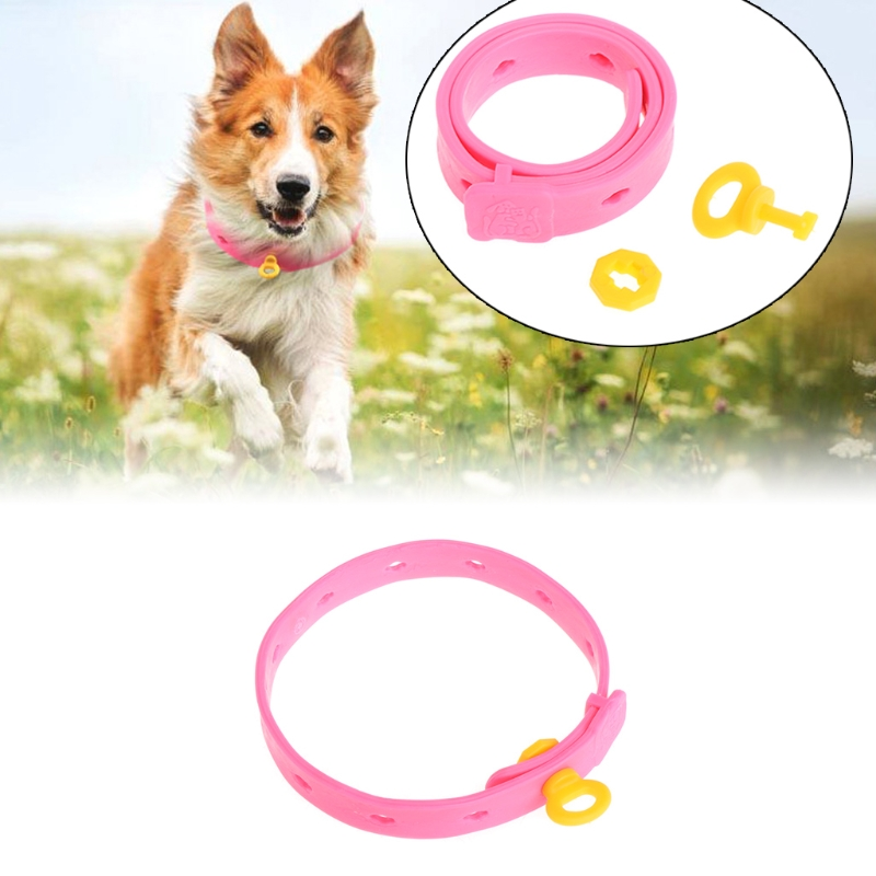 Adjustable Dog Cat Rabbit Neck Strap Anti Flea Mite Acari Tick Remedy Pet Collar Pet Supplies Summer