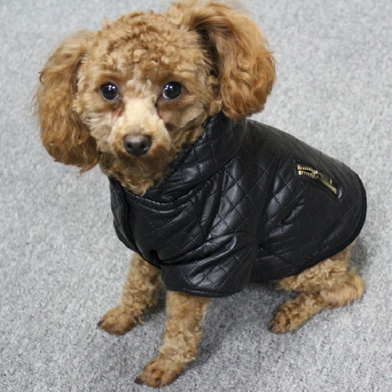 Leather small pet dog clothes winter Detachable two-piece set dog coat and jacket warm four legs hoodie dog apparel pet clothing