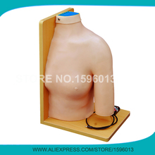 Advanced Shoulder Joint Intracavitary Injection Simulator,Cavity/Articular injection Teaching Model