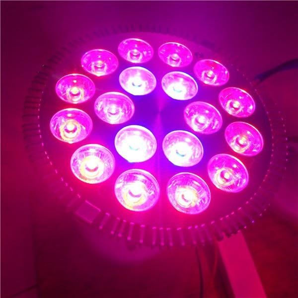 House Plant Grow Light: E27 18*1W Led Grow Light 12Red 6Blue Par38 Flowering