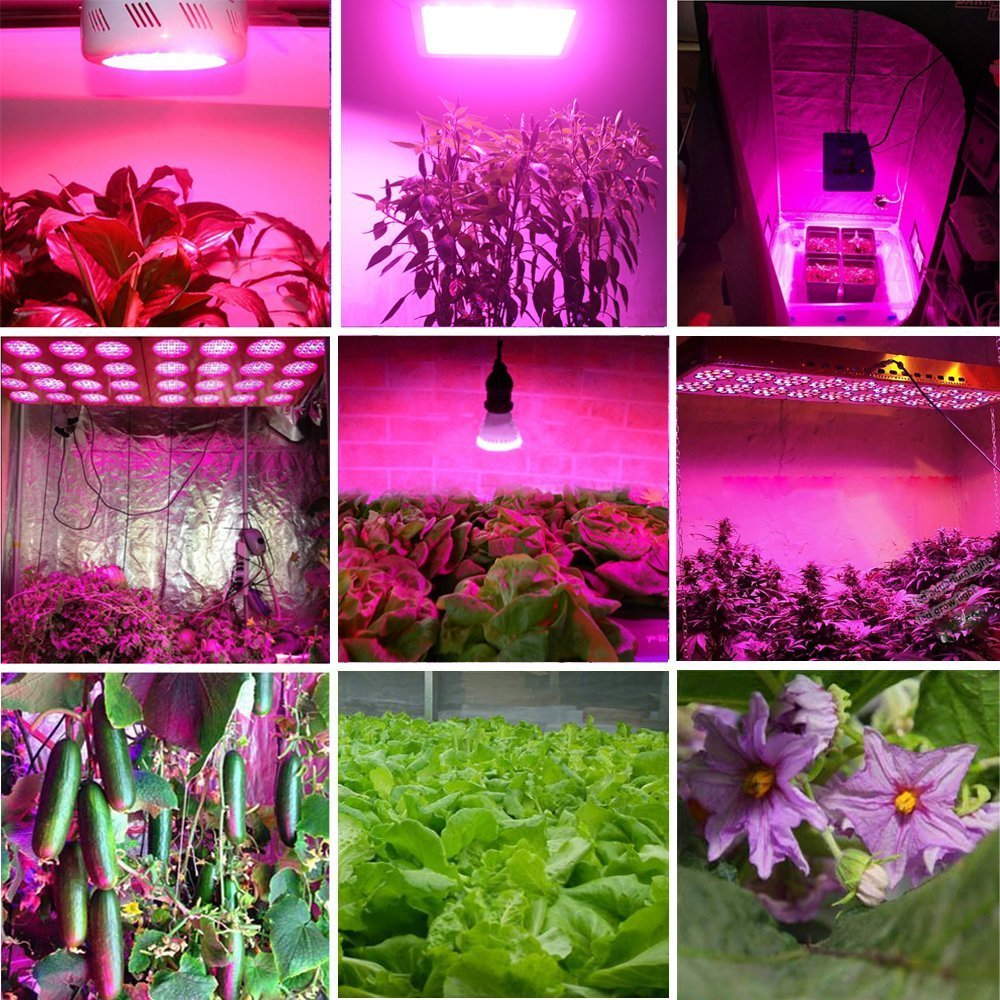 BestVA-600W-800w-1000W-1200W-1600W-Full-Spectrum-LED-Grow-Light-indoor-plants-flower-seedling-Lamps