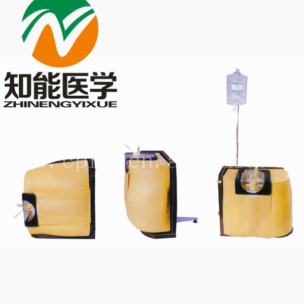 BIX-L60 Spine Puncture Model, Lumbar Puncture  MQ130 child bone marrow puncture and femoral venous puncture model