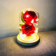 Red Rose With Fallen Petals in a Glass Dome on Wooden Base Birthday Gift Beauty &the Beast Valentines Day Best Top Sale
