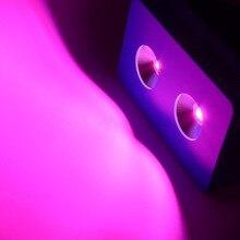 Dominator 400 W COB Plein Specturm 365-750nm UV IR LED Élèvent La Lumière pour les Légumes Fleur Fruit Intérieur Plantes de Culture sous serre