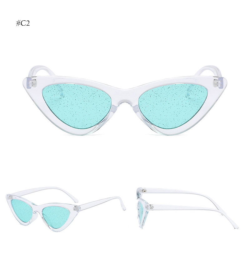 cat eye sunglasses (13)