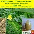 Tribulus Terrestris Экстракт 90% Сапонины Порошок 250 грамм (8.8 унц.) бесплатная доставка